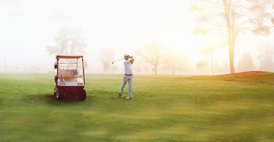 Golf Travel Insurance from InsureMore on australia pickup trucks, australia pop up camper, australia dog fence,